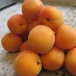 De beaux abricots