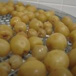 Raisins pendant le séchage
